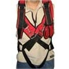 Aerobatic Harness