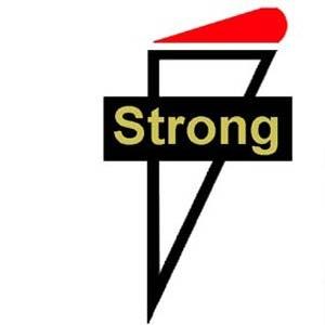 Strong Enterprises Logo