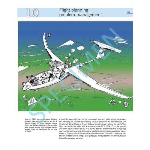 """Dancing With The Wind Flight Planning Problem Management"""""""